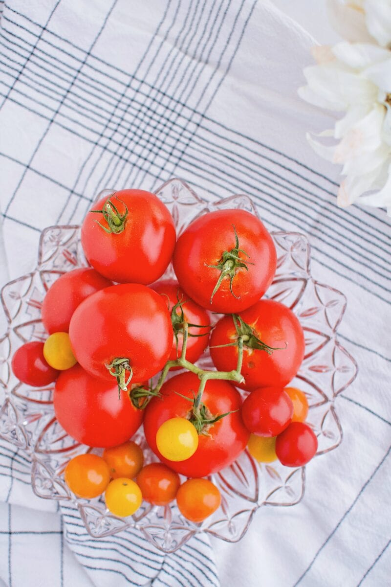 fresh summer tomatoes