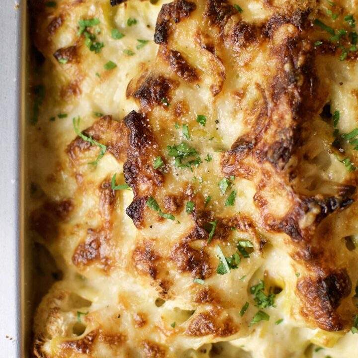 cauliflower and leek gratin fresh from the oven.