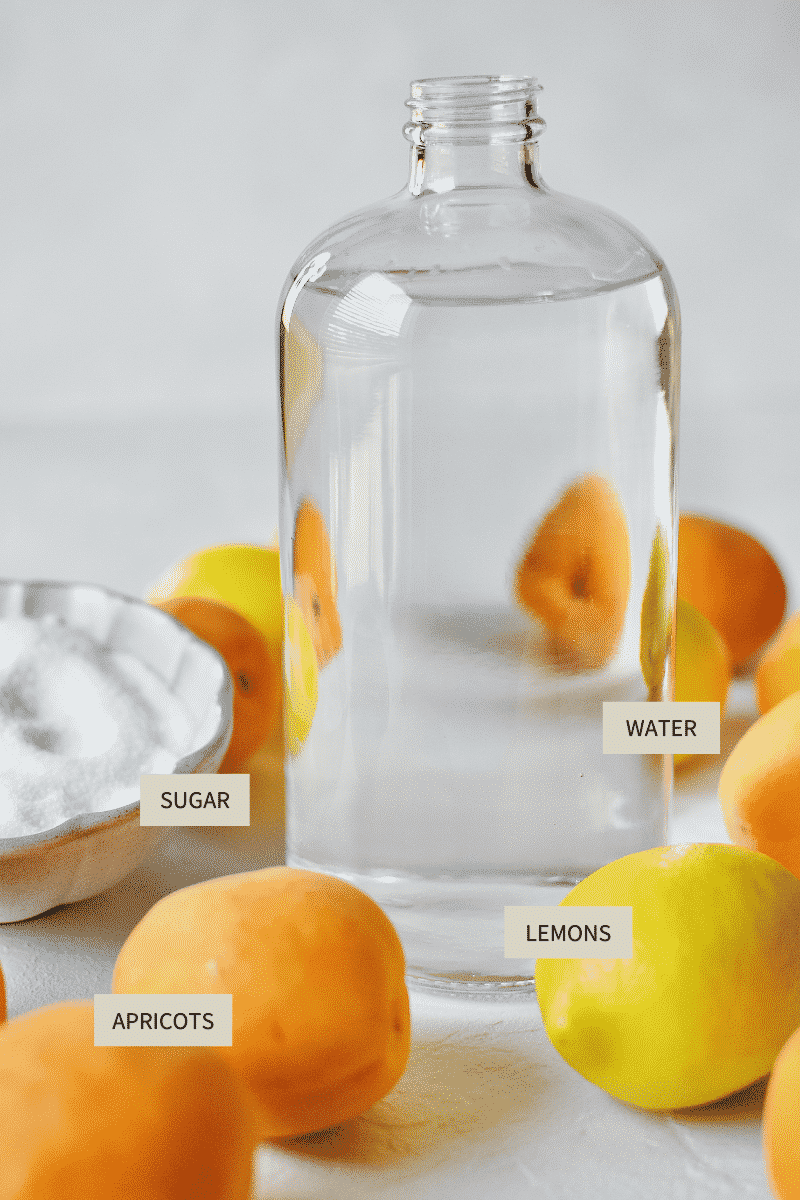 Ingredients needed to make Homemade Apricot Nectar Juice