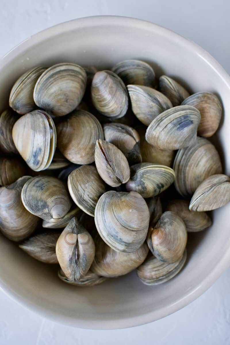 Freshly cleaned clams in a large bowl.